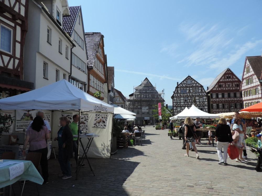 Blümlesmarkt in Leonberg