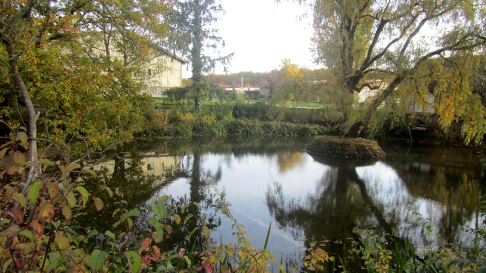 Ein Teich auf dem Gelände des Rappenhofs